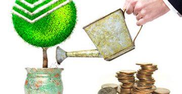 вклады с ежемесячной выплатой процентов